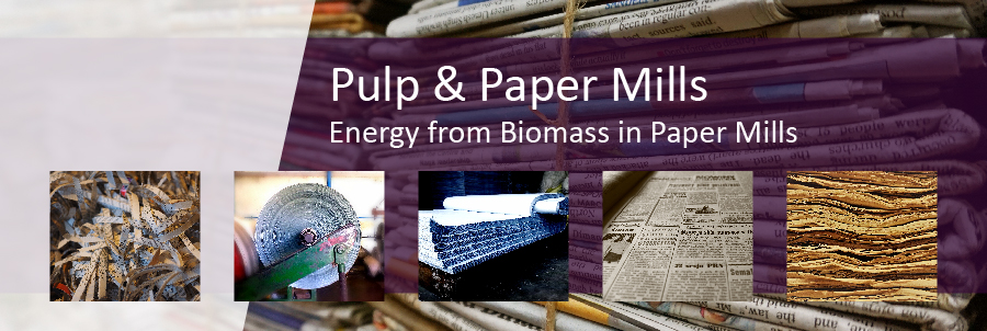 Energy from Biomass in Pulp & Paper Mills