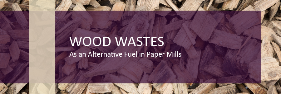 Energy from Biomass for Pulp & Paper Mills | DDS Calorimeters