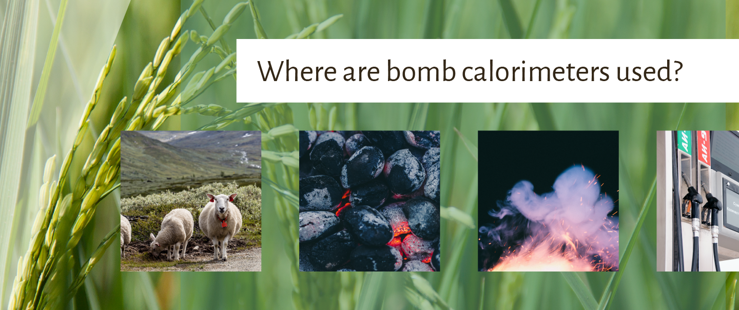 Where is a bomb calorimeter used?