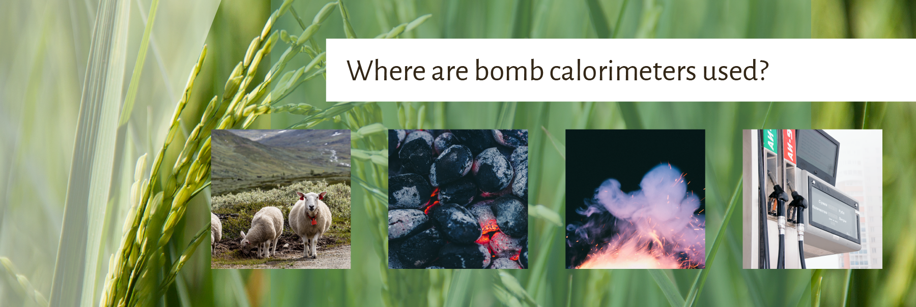 Where are bomb calorimeters used? | DDS Calorimeters